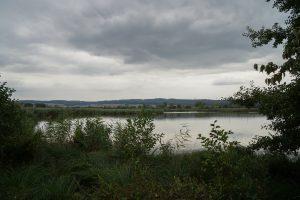 Schweinsberger Moor